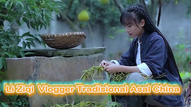 Li Ziqi Vlogger Tradisional Asal China